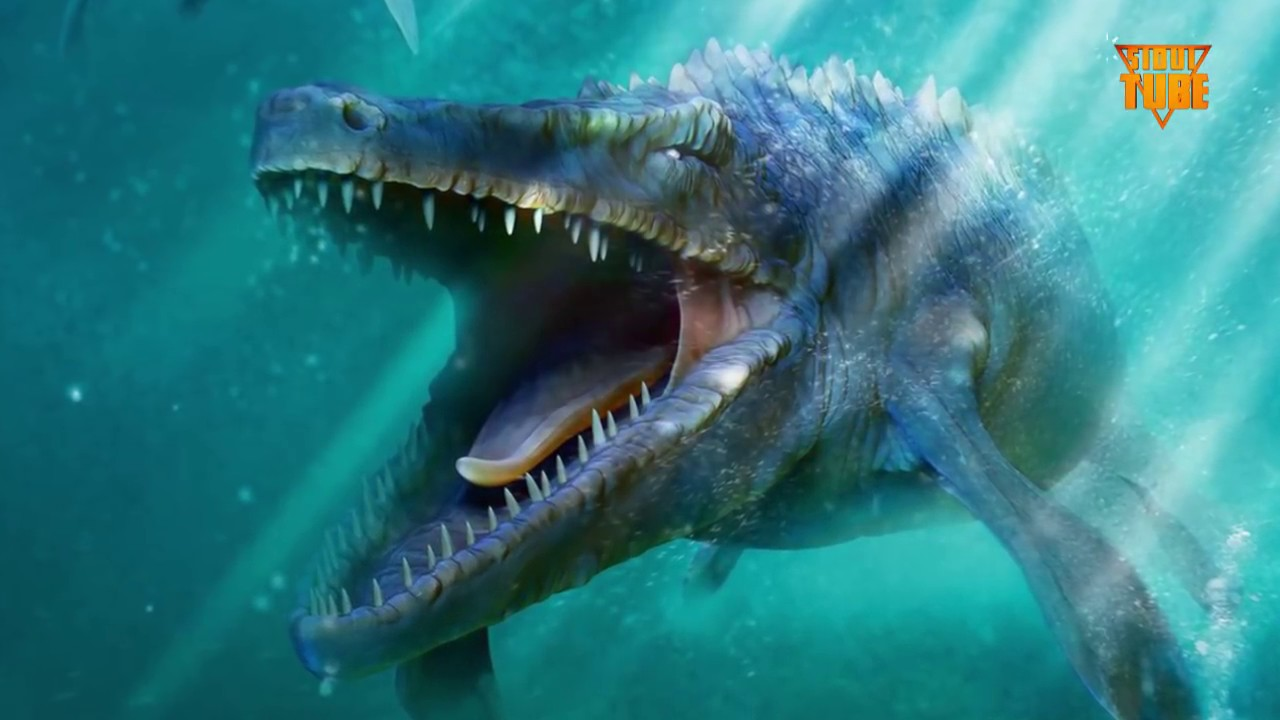 Unduh 48 Koleksi Gambar Ikan Purba Terbesar Terpopuler