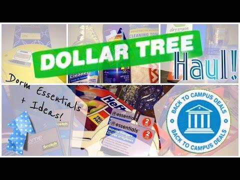 dollar tree college haul room essentials