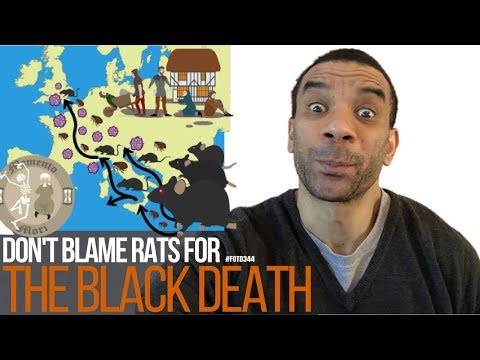 #FOTD344 Don't blame rats for the black death