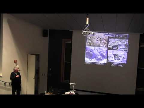 Polar Lecture: Glaciation During the Late Paleozoic Ice Age