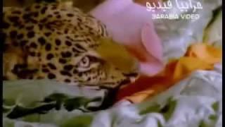 May Hariri مي حريري - Hasahar Ouyoun Music Video Clip حسهر عيونو.rv