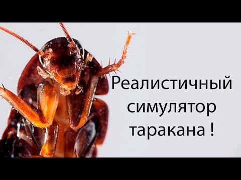 Уникальный Симулятор Муравейника Empires Of The Undergrowth Скачать - фото 2