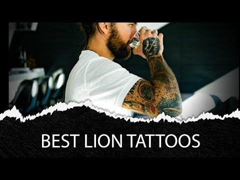 100 Best Lion Tattoo Ideas For Men