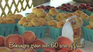 Bohringer'sFruit Farm 2009 Summer TV
