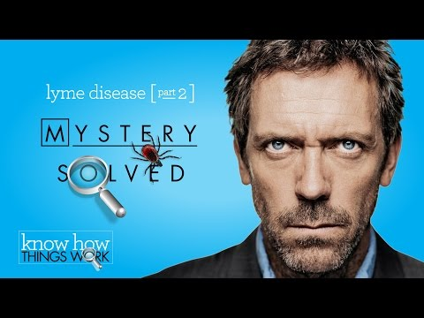 Mystery Health Issues? My Story: The Many Symptoms of Lyme Disease [HD]