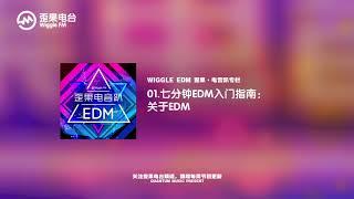 01.七分钟EDM入门指南:关于EDM