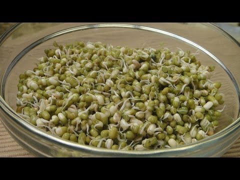 How to make Sprouts - YouTube