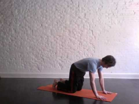 yoga for beginners down dog with mike  youtube