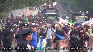 1 of 3, Labor Day West Indian American Day Parade New York