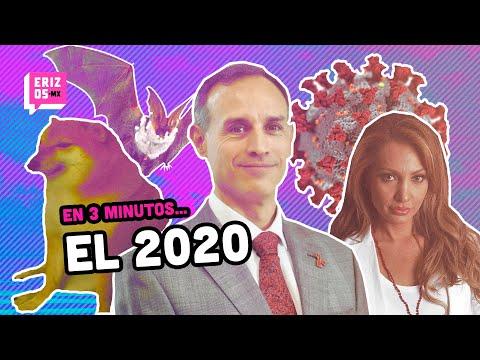 El 2020 en 3 minutos | Erizos