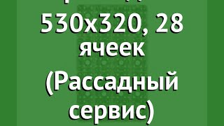 Кассета для рассады 530x320, 28 ячеек (Рассадный сервис) обзор РС0087