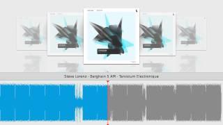 Steve Lorenz - Berghain 5 AM - Tarvisium Electronique