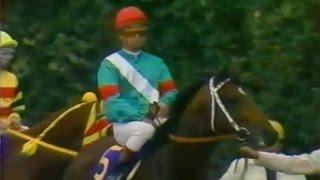 シンボリルドルフ 菊花賞 1984.11