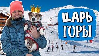 Горнолыжный курорт ТУУТАРИ ПАРК Катаемся с Джеком на горных лыжах С собакой на лыжах