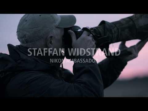 Nikon Ambassador – Staffan Widstrand