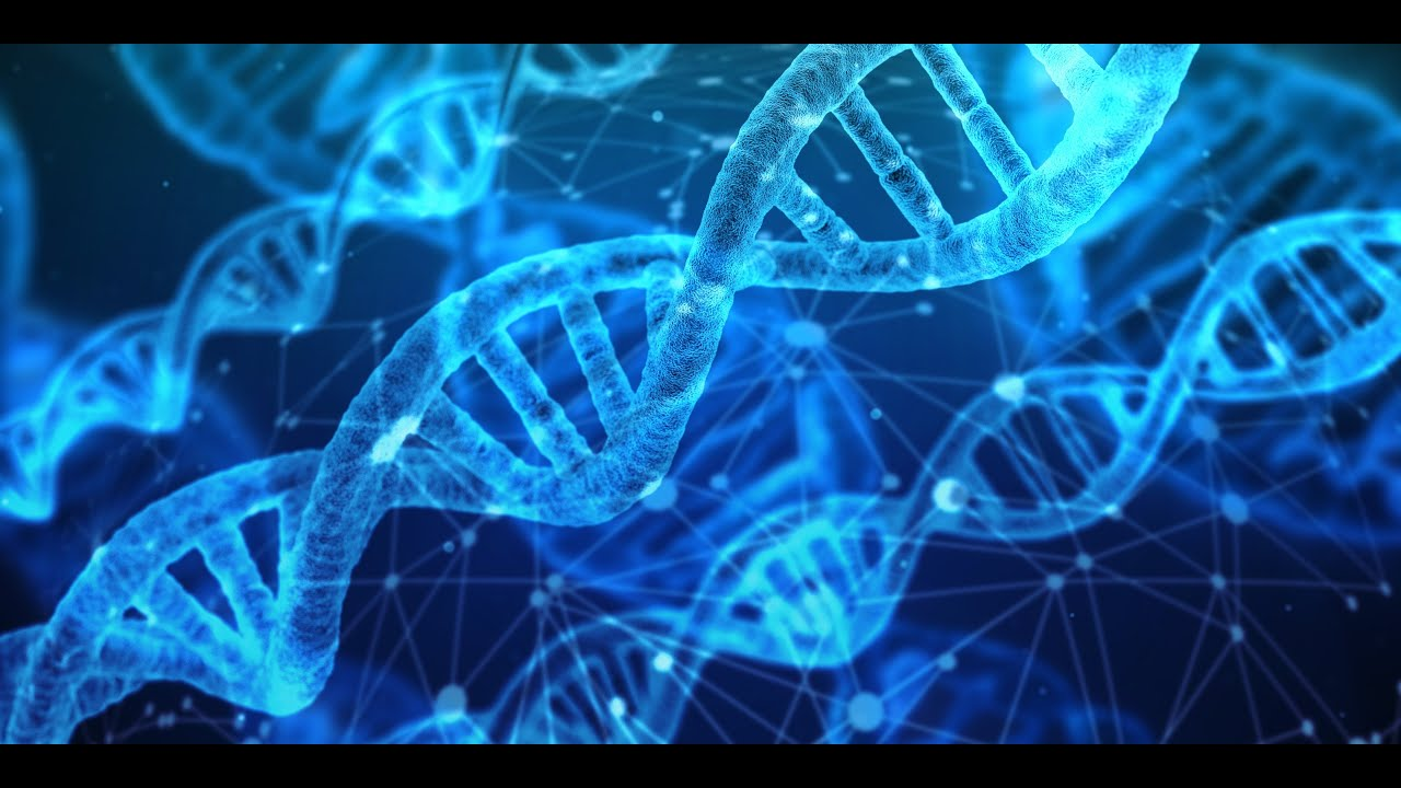 Stem Cell Production Music | DNA Stimulation & Repair | Music for Healing Cells from Toxins | 52