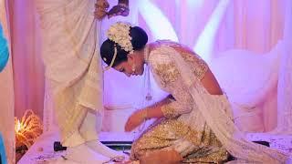 sri lankan wedding video trailer, charuni & sameera wedding highlights