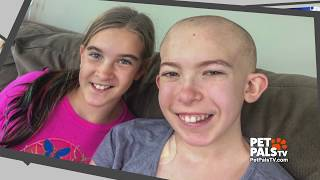 Dog helps girl with brain cancer