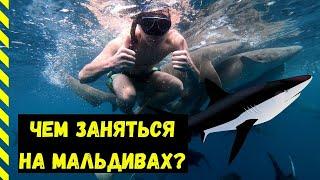 Лучшая экскурсия на Мальдивах | Плавание с акулами, дельфинами и скатами | Бюджетные Мальдивы