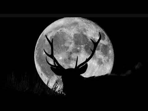 Is the July 2021 full moon tonight? When to see the 'Buck Moon', and ...