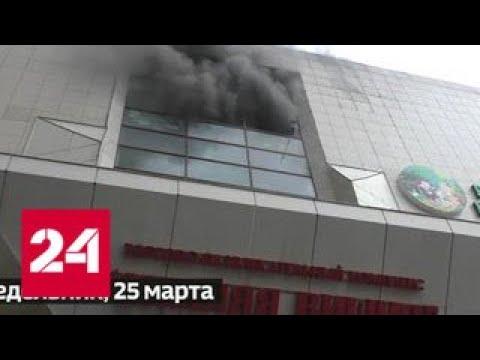 События недели: министр под стражей и скандал в семье Дудя - Россия 24