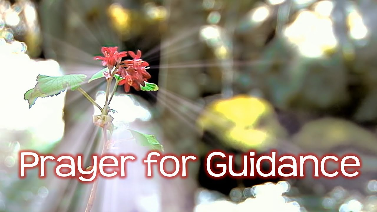 Catholic prayers for help and guidance