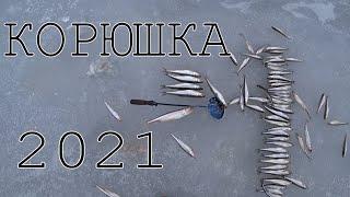 Корюшиная рыбалка на Финском заливе Видимо закрытие зимнего сезона