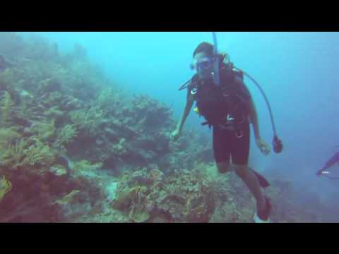 Diving with Sea Sports Belize DEC 19 2013!
