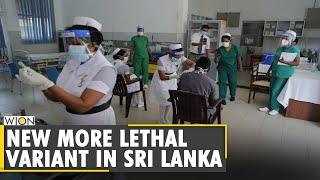COVID-19: New more lethal variant in Sri Lanka | English News | International Updates