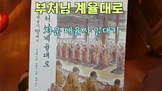 부처님 계율대로 - 자운 대율사 일대기 - (도서출판 …