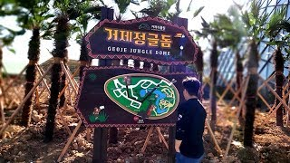 2019 Media LED tunnel of 'Geoje jungle dome' in KOREA