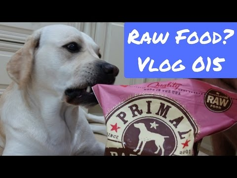 Raw Food?