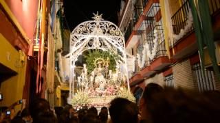 Divina Pastora de Triana 2013 - petalada Rodrigo de triana