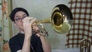 In My Bones -Jacob Collier w/Horns
