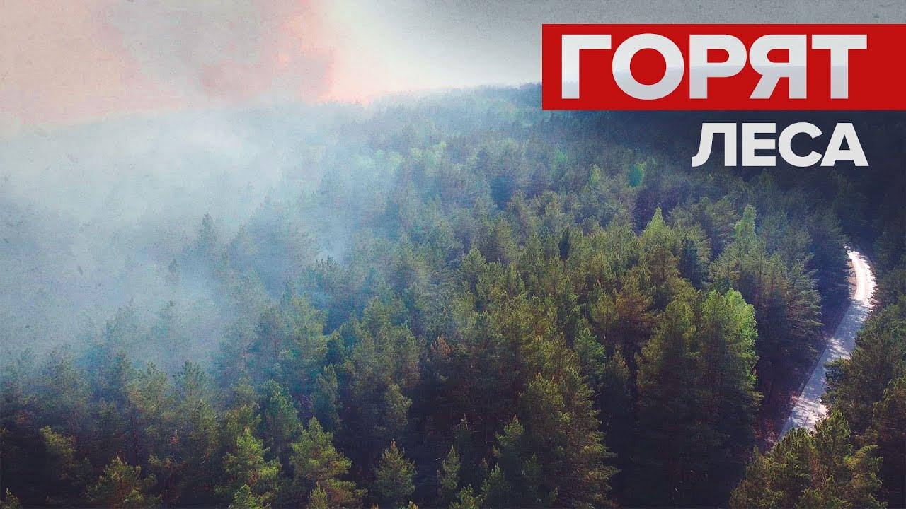 Тушение лесных пожаров в Тюменской области