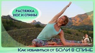 Как избавиться от БОЛИ В СПИНЕ / Растяжка ног и спины / Растяжка для начинающих
