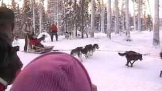 Sejour en Laponie premier jour