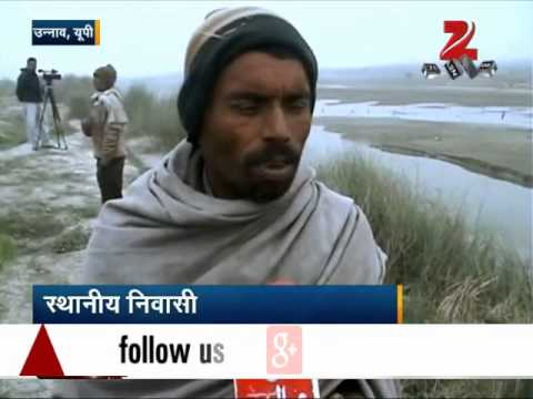UP: Scores of dead bodies found floating in Ganga river in Unnao