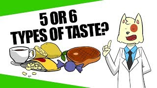 Are There Really Only 5 Types of Taste?