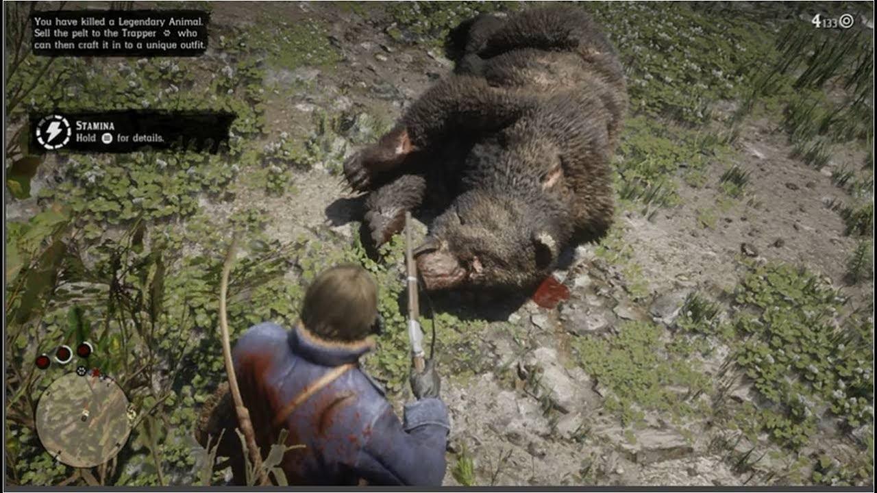 red dead redemption legendary bear pelt