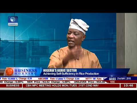 Analysing Nigeria's Agricultural Sector Pt.2 |Business Morning|