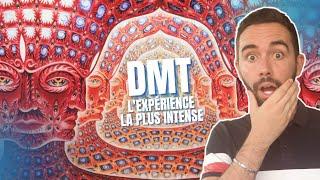 LA VÉRITÉ SUR LA DMT, LA MOLÉCULE DE L