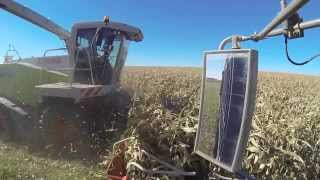Corn Silage 2013 - Dairy Farming in Canada