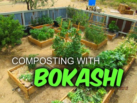 Bokashi Composting: Interview with Morgan Coffinger