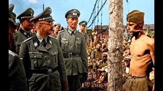 Советский Боксер Которого Уважали Немцы. Нокаут в лагере