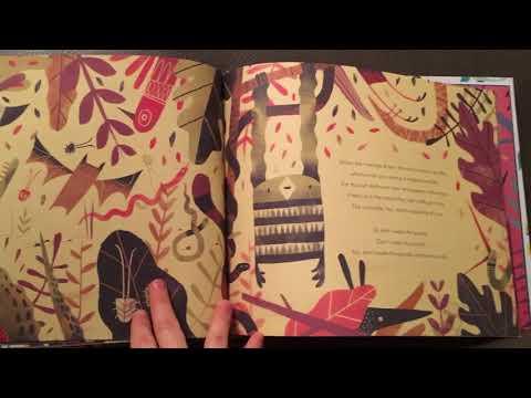 Pandamonia by Chris Owen and Chris Nixon Usborne book reading