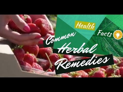 HEALTH FACTS: Common Herbal Remedies