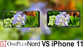 Oneplus Nord Vs iPhone 11 Camera Test