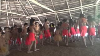 Video Comunidad Yagua - Amazonas download MP3, 3GP, MP4, WEBM, AVI, FLV Juni 2018