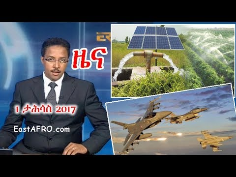 Eritrean News ( December 1, 2017) |  Eritrea ERi-TV